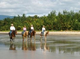 4 Mile Beach horse ride