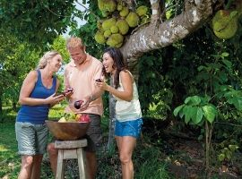 Experience the tropical taste of North Queensland