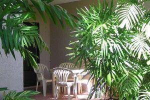 Port Douglas Holiday Accommodation
