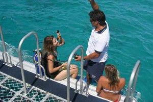Snorkel The Great Barrier Reef on your honeymoon