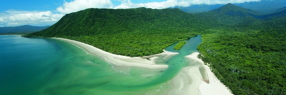 Daintree Rainforest, Port Douglas weddings